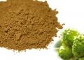 水溶性諾麗果醱酵濃縮粉(9倍濃縮)–細粉